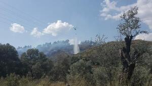 Muğlada yerleşim yeri yakınında orman yangını/ Ek fotoğraflar