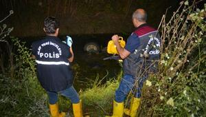 Kamyonet sulama kanalına devrildi: 1 ölü