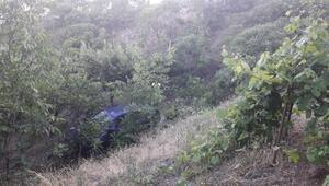 Virajı alamayan otomobil, 50 metre derinliğindeki bahçeye uçtu