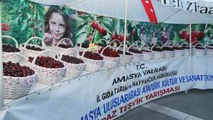 Türkiye'de kirazın yüzde 7'sini Amasya karşılıyor