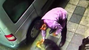 Kadıköyde köpeğe şiddet uyguladığı için gözaltına alınan saldırganla ilgili yeni gelişme