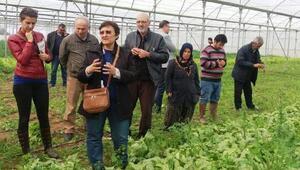 Alaşehirde çiftçiler için açılan kurslar tamamlandı