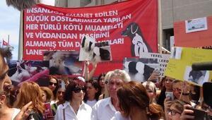 Fotoğraflar // Hayvanseverlerden adliye önünde Sapanca isyanı