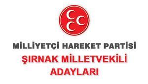 MHP Şırnak Milletvekili Adayları kimler 2018 MHP Şırnak Adayları