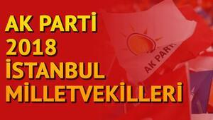 İstanbulda Ak Parti milletvekilleri kimler oldu İstanbul 1, 2. ve 3. bölge milletvekilleri