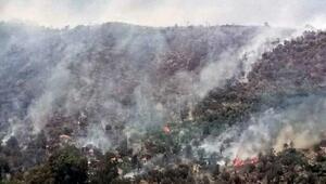 Seydikemerde yangın; alevler yerleşim yerine 2 metre kala söndürüldü