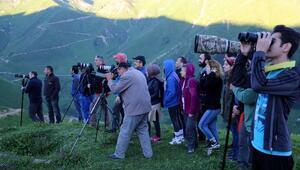 Türkiyenin dört bir yanından geldiler, dağ horozunu sadece 30 saniye görebildiler