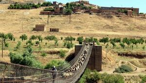 Hasankeyfte ahşap köprüdeki yangını vatandaşlar söndürdü