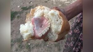 Ekmekten takma diş çıktı