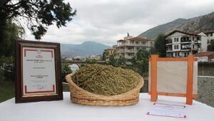 Amasya, iki ürününe coğrafi işaret tescil belgesi aldı
