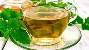 Melisa çayı nedir Melisa çayının faydaları nelerdir