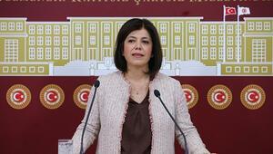 HDPnin Meclis Başkanı adayı Meral Danış Beştaş oldu