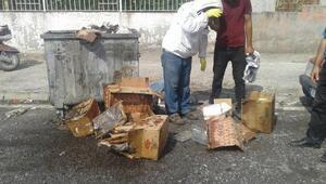 Ölü arılar çöp konteynerine atıldı
