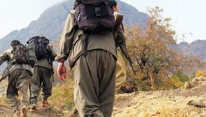 Son dakika... 3 ilde terör örgütü PKKya ağır darbe