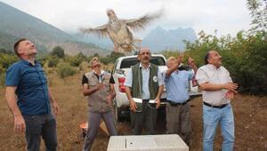 Sarıcakayada 200 keklik doğaya salındı