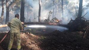 Bucada orman yangını (2)