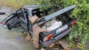 Otomobil, yol kenarındaki kayalara çarptı: 1 ölü, 1 yaralı