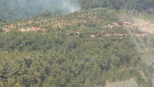 Aydındaki yangın ormanlık alana sıçramadan söndürüldü