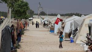 Suriyeliler, Türkiye nüfusunun yüzde 4.39unu oluşturuyor