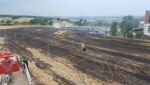 19 Mayısta ki anız yangını söndürüldü
