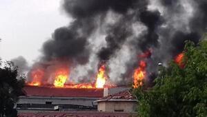 Zeytinburnunda fabrika yangını