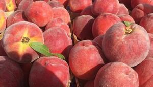 Rusyaya meyve sebze ihracatında şeftali ilk sırada