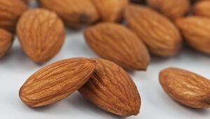 En besleyici yiyecek hangisi Bilim insanları bu sorunun cevabını buldu