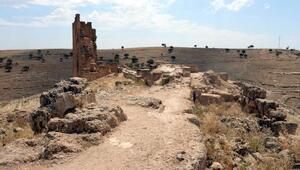 Zerzevan Kalesinde kazılara yeniden başlandı