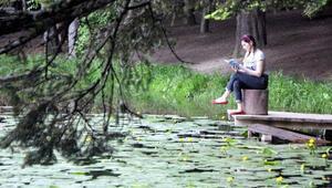 Gölcük Tabiat Parkı, nilüfer gölüne dönüşecek
