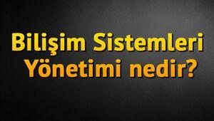 Bilişim Sistemleri Yönetimi nedir