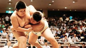 'Mini' sumo