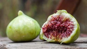 Taze incirde ihracat hızlı başladı