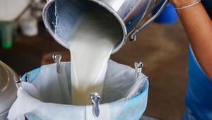 Çiğ süt fiyatları üreticiyi sevindirdi