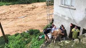 Rize'de şiddetli yağış taşkınlara neden oldu