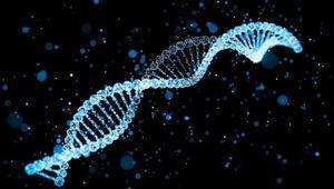 DNA bazlı nano-robotlar kanser tedavisinde ümit vadediyor