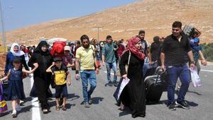 55 bin Suriyeli, bayram için ülkelerine gidiyor (2)