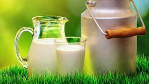 Çiğ süt fiyatı ile ilgili tartışma alevlendi