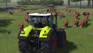 Kapsamlı bir inceleme: Cattle and Crops