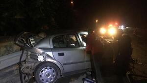 Yola çıkan köpek zincirleme kazaya yol açtı: 7 yaralı