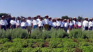 Çocuklar, akıllı köyde tarım eğitimi aldı