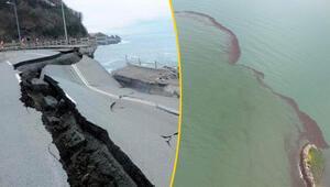 Son dakika... Orduyu sel vurdu, denizde fındık adası oluştu... İşte son durum