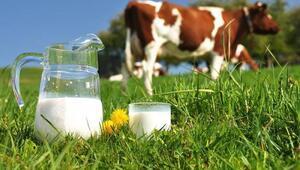 Süt fiyatlarının otomatik belirlenmesi gerekiyor