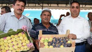 Tarsusun incirine şölenli tanıtım