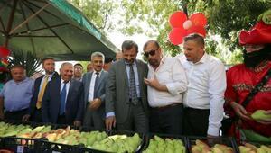 Türkiye'deki armut üretiminin yüzde 30'u Gürsu'da