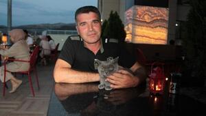 İngiliz kedisi Moka, kafenin maskotu