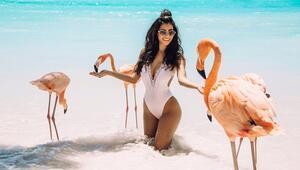 Kendinizi vahşi yaşamın bir parçası hissedebileceğiniz dört plaj