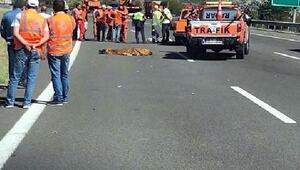 Otomobilin çarptığı 2 Karayolları işçisi öldü