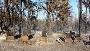 Boluda orman yangını(2)