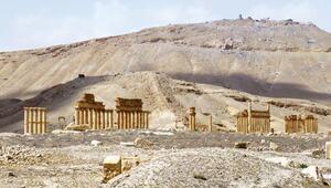 Palmira 2019da ziyarete açılacak