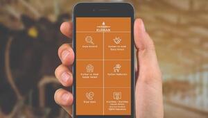 İBBnin mobil kurban uygulaması hizmete girdi